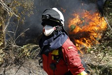 Chile combate incendios forestales